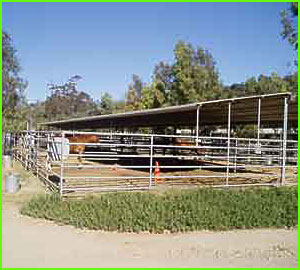 sycamore canyon horse stables rates