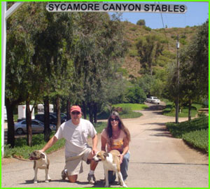sycamore canyon horse stables facilities.